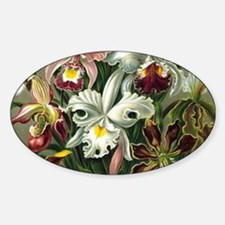 Vintage Orchid Floral Decal