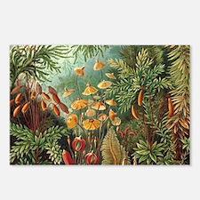Vintage Plants Decorative Postcards (Package of 8)