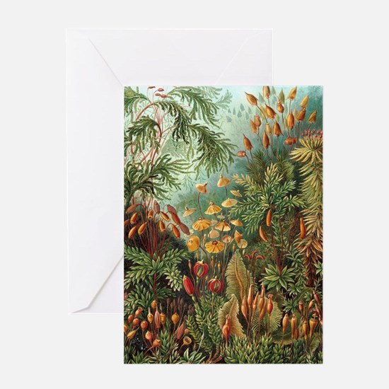 Vintage Plants Decorative Greeting Cards
