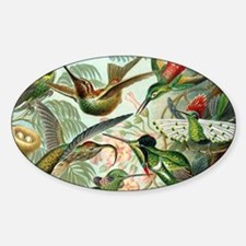 Vintage Hummingbirds Decorative Decal