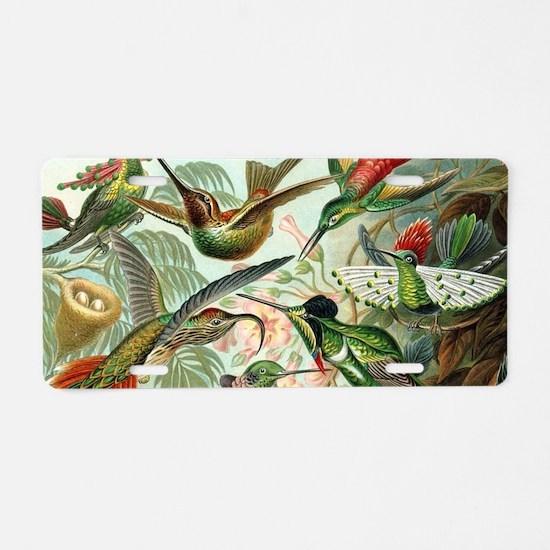Vintage Hummingbirds Decora Aluminum License Plate
