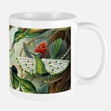 Vintage Hummingbirds Decorative Mugs