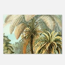 Vintage Tropical Palm Postcards (Package of 8)