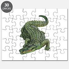 SWAMP Puzzle
