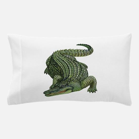 SWAMP Pillow Case