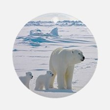 Polar Bears Round Ornament