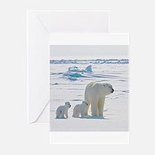 Polar Bears Greeting Cards