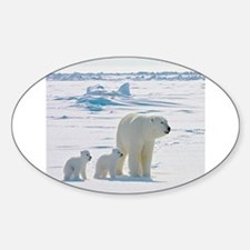 Polar Bears Decal