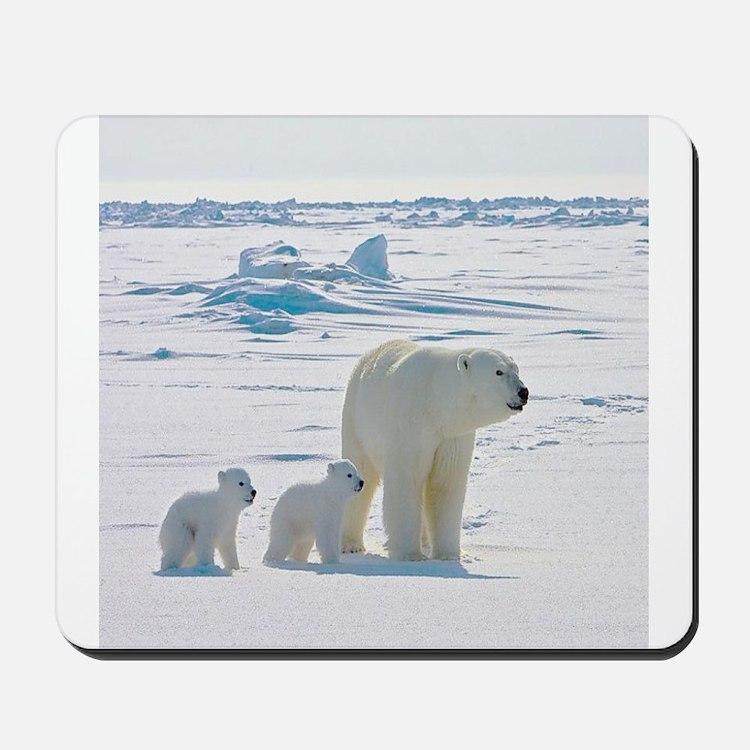 Polar Bears Mousepad