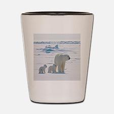 Polar Bears Shot Glass