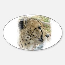 Cheetah Decal