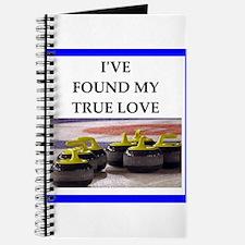 Unique Curling funny Journal