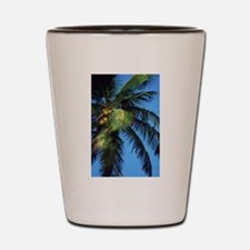 palm tree Shot Glass