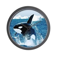 Killer Whale Wall Clock