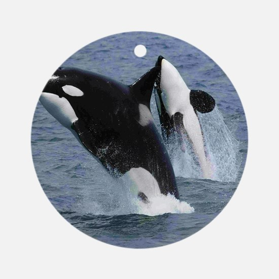 Killer Whales Round Ornament