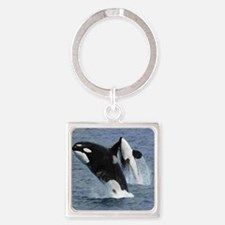 Killer Whales Keychains