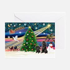 XmasMagic/2 Poodles (blk) Greeting Cards (Pk of 10