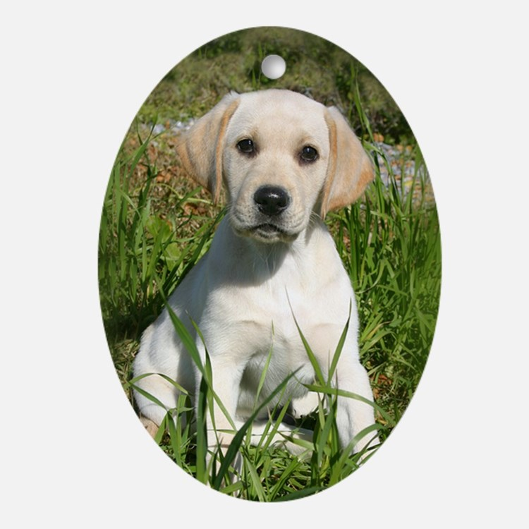 Yellow Lab Puppy Oval Ornament