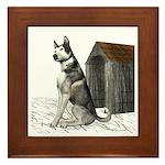 Dog (Malamute) Framed Tile