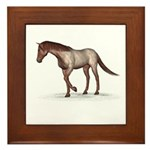 Horse (Strawberry Roan) Framed Tile