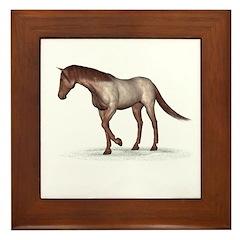 Horse (Strawberry Roan) Framed Tile