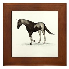 Horse (Paint) Framed Tile