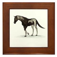 Horse (Paint) Framed Tile