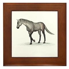 Horse (Dapple) Framed Tile