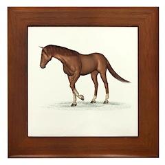 Horse (Chestnut) Framed Tile
