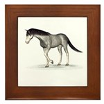 Horse (Blue Roan) Framed Tile