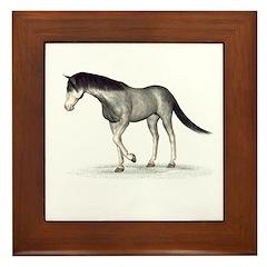 Horse (Blue Roan) Framed Tile