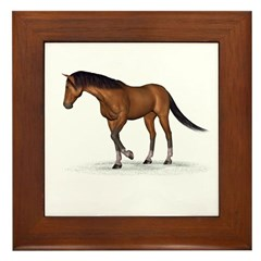 Horse (Bay) Framed Tile
