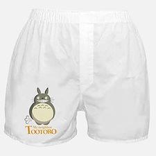 Unique Totoro Boxer Shorts