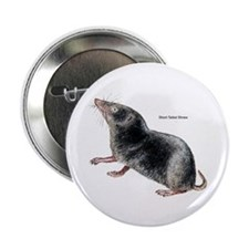 "Short-Tailed Shrew 2.25"" Button (10 pack)"