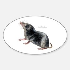 Short-Tailed Shrew Oval Decal