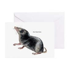 Short-Tailed Shrew Greeting Cards (Pk of 10)