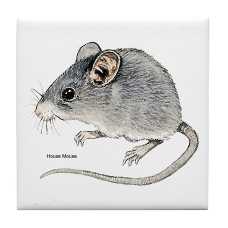 Mouse Rodent Tile Coaster