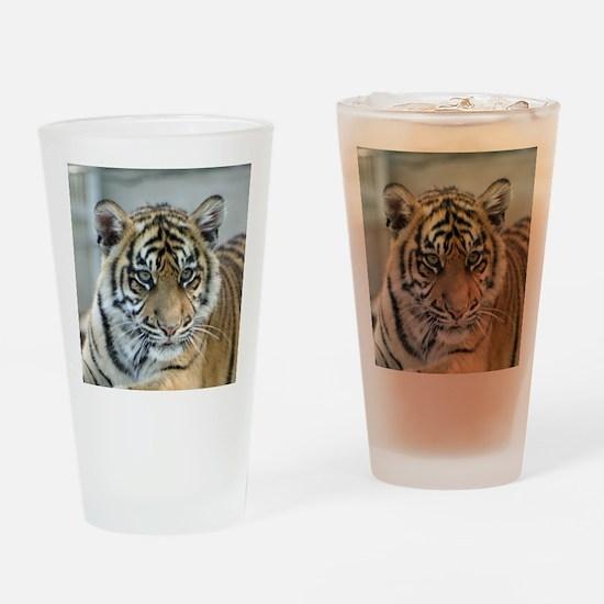 Tiger011 Drinking Glass