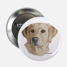 Young Yellow Lab Button