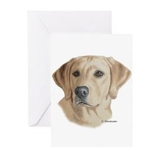 Young Yellow Lab Greeting Cards (Pk of 10)