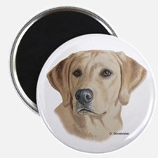 Young Yellow Lab Magnet