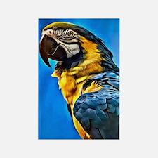 Blue Macaw Bird Rectangle Magnet