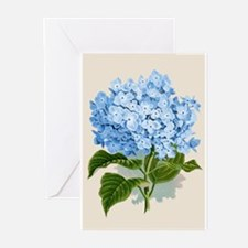 Blue hydrangea flowers Greeting Cards