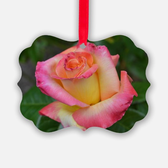 Cool Greetingcards Ornament