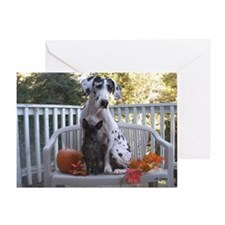 NH Fall Friends Greeting Card