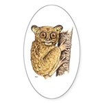 Tarsier Rain Forest Oval Sticker