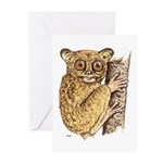 Tarsier Rain Forest Greeting Cards (Pk of 10)