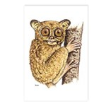 Tarsier Rain Forest Postcards (Package of 8)