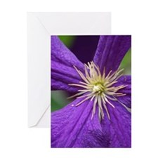 Purple Radiance Greeting Card