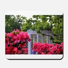 Old Well in Spring Mousepad